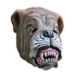 Hunde Maske Bulldogge