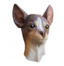 Hunde Maske aus Latex Chihuahua