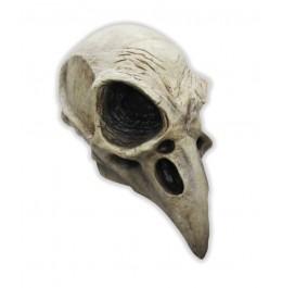 Vogel Schädel Maske
