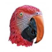 Maske Papagei
