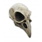 Maska czaszka ptaka