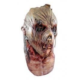 Masque d'horreur face cachée